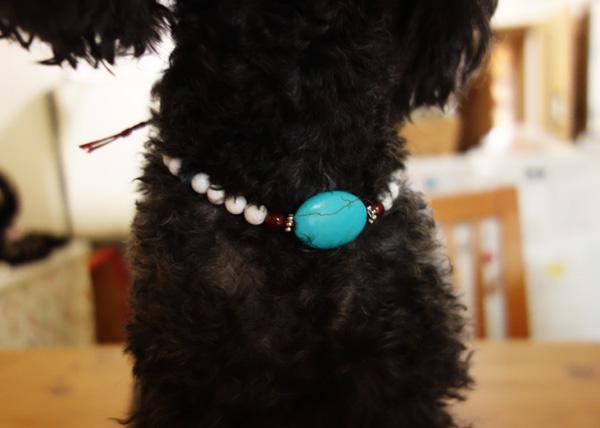 犬用 天然石ネックレス